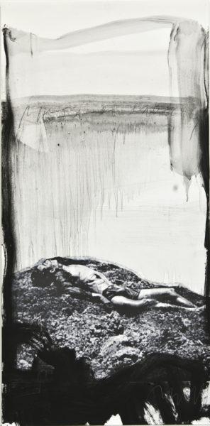 pieta of cruelty . 43x88 . 2010